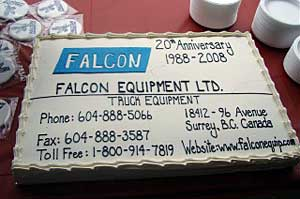falcon 20th birthday cake